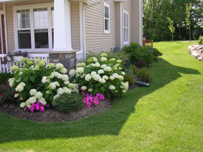 Plant Care in Ypsilanti, MI