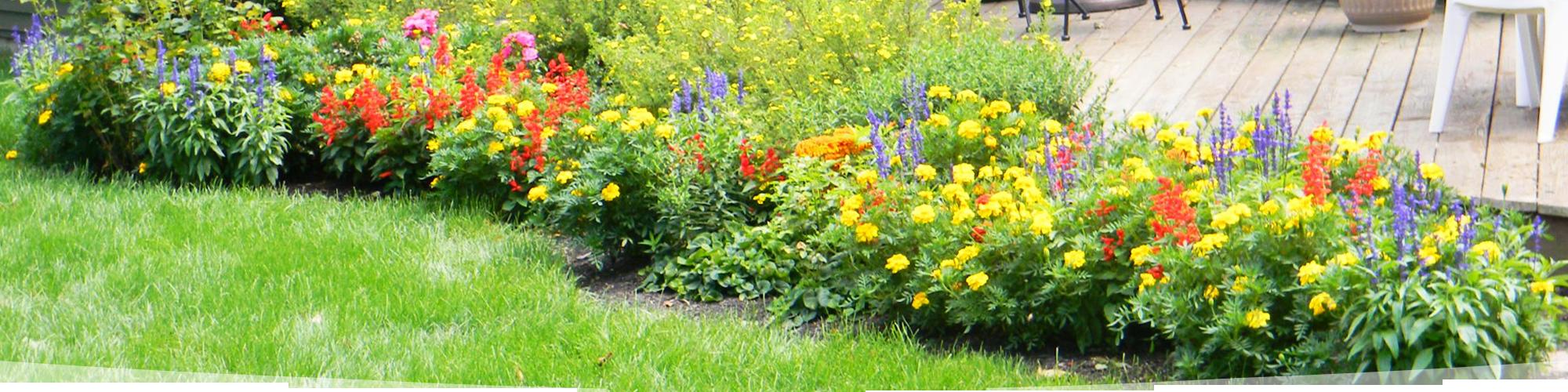 Garden Design Questionnaire gardening | landscaping design, planting & maintenance | michigan